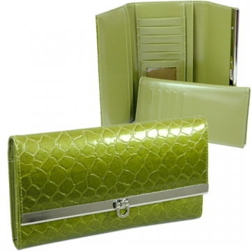 Dasein Snake Skin Embossed Fold Over Flap with Flip Clasp Checkbook Wallet-Green