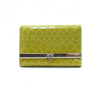 Dasein Snake Skin Embossed Fold Over Flap with Flip Clasp Wallet-Lt. Green